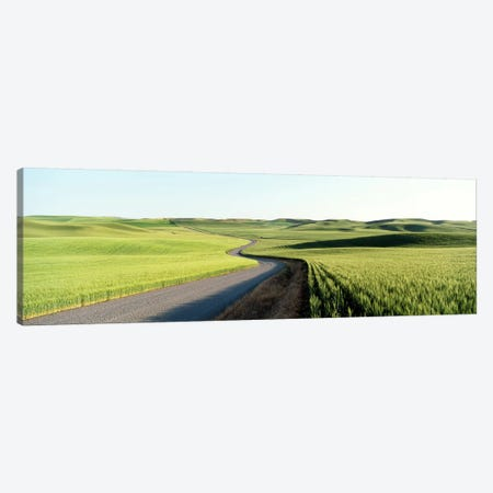 Gravel Road Through Barley and Wheat Fields WA Canvas Print #PIM4151} by Panoramic Images Canvas Art Print