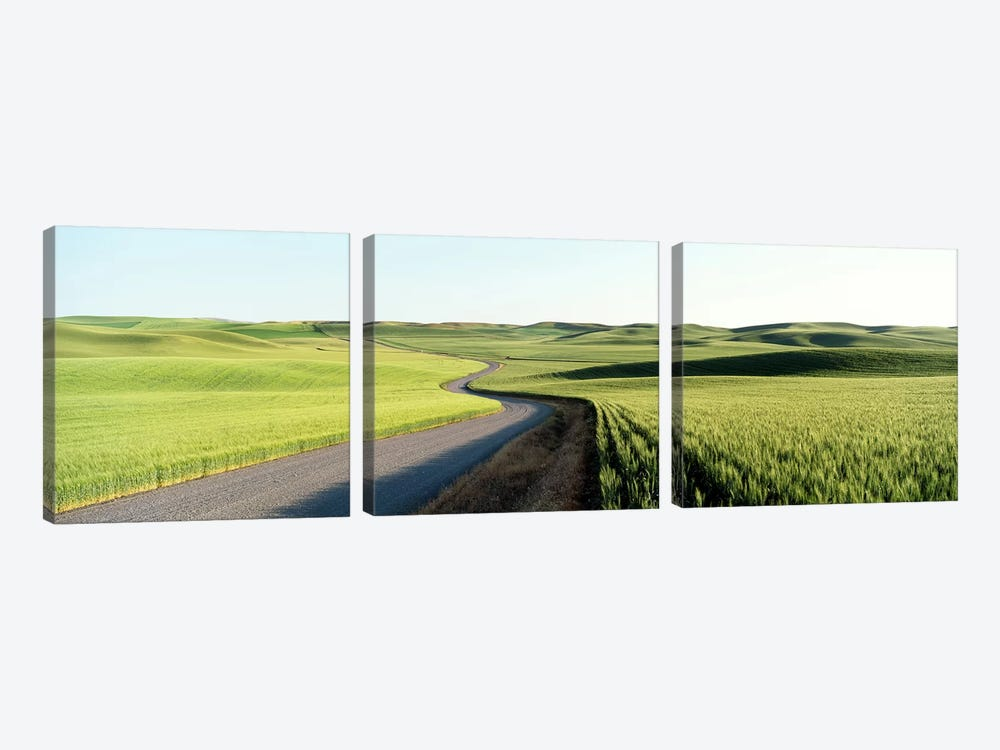 Gravel Road Through Barley and Wheat Fields WA by Panoramic Images 3-piece Art Print