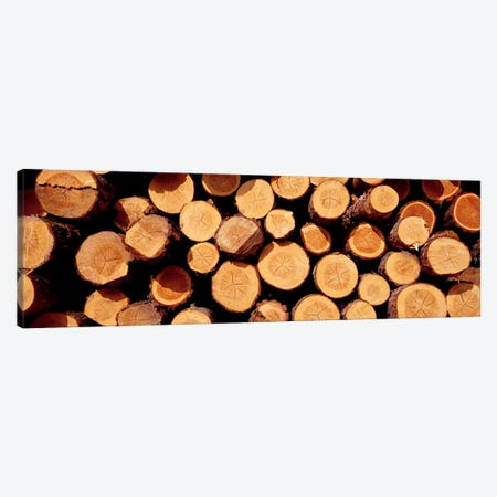 Logs Canvas Print #PIM4177} by Panoramic Images Canvas Wall Art