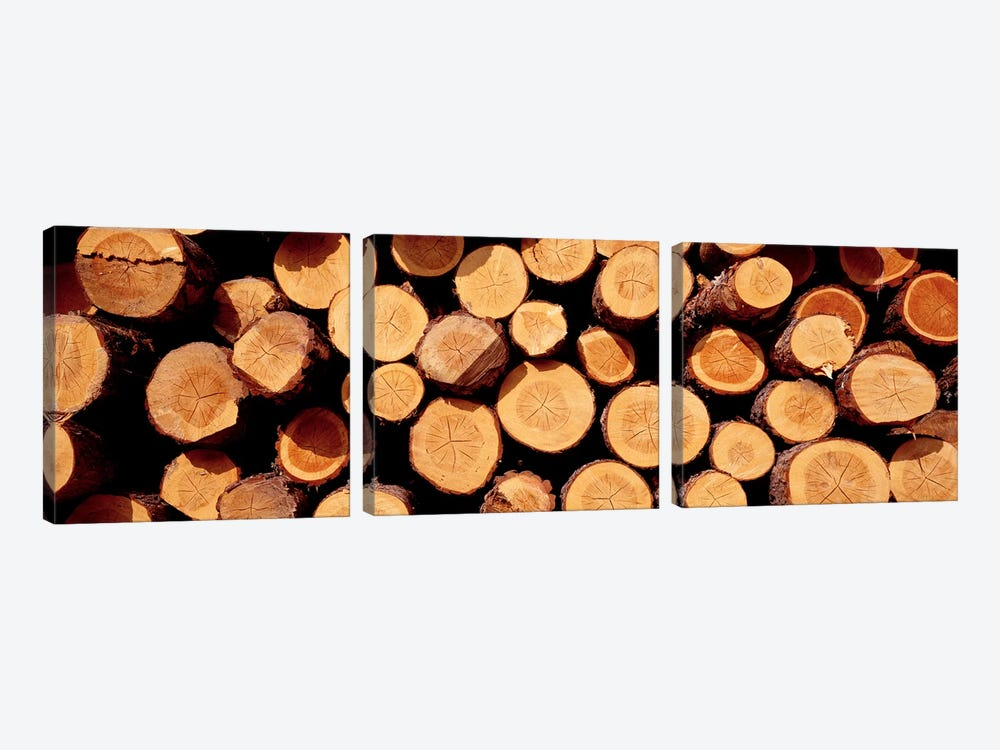 Logs by Panoramic Images 3-piece Canvas Print