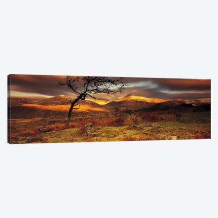 Mountain Landscape, Snowdonia National Park, Wales, United Kingdom Canvas Print #PIM4212} by Panoramic Images Canvas Wall Art