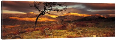 Mountain Landscape, Snowdonia National Park, Wales, United Kingdom Canvas Print #PIM4212