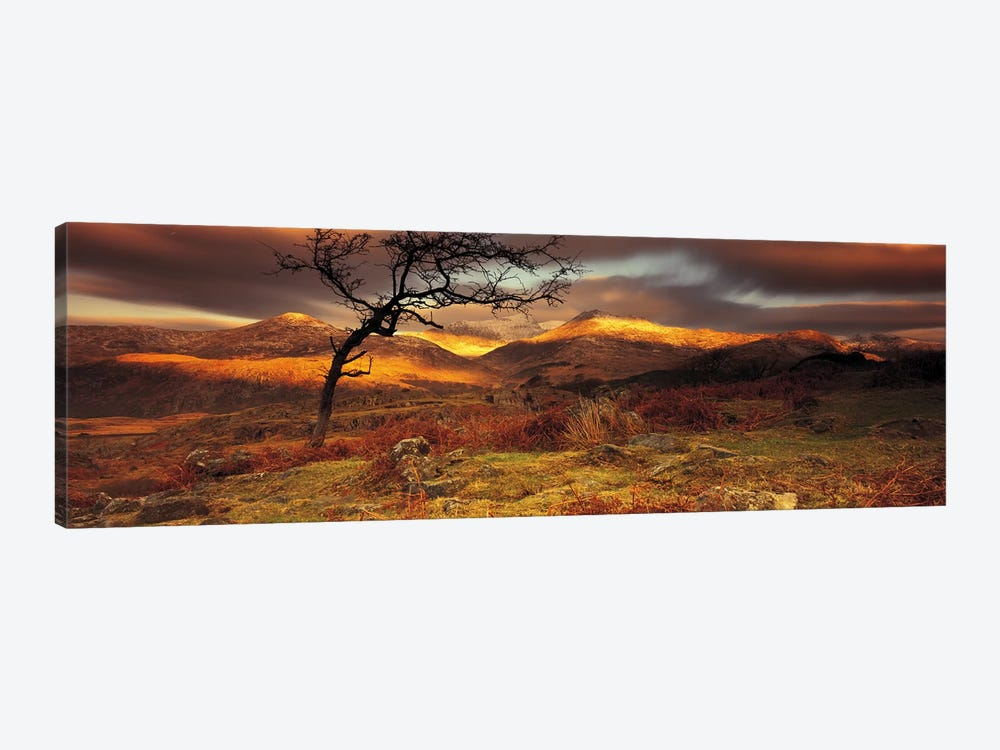 Mountain Landscape, Snowdonia National Park, Wales, United Kingdom by Panoramic Images 1-piece Canvas Wall Art