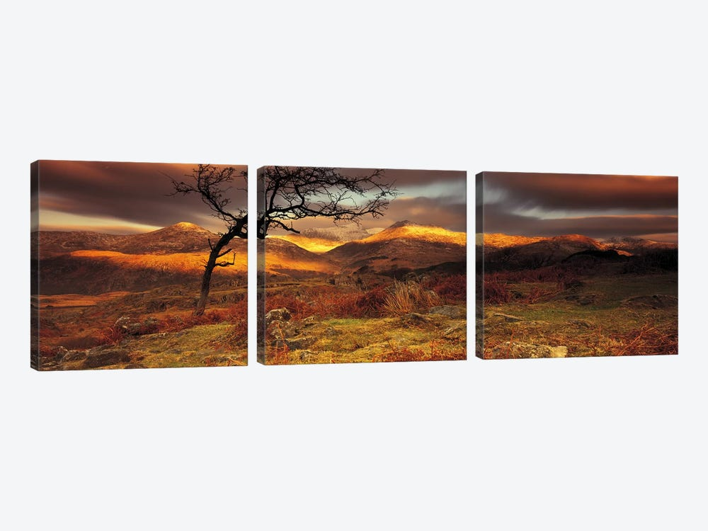 Mountain Landscape, Snowdonia National Park, Wales, United Kingdom by Panoramic Images 3-piece Canvas Art