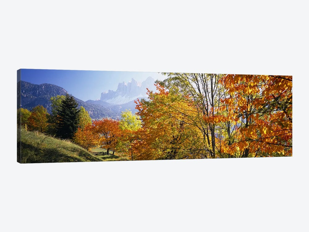 Autumn Landscape II, Odle/Geisler Group, Dolomites, Val di Funes, South Tyrol Province, Italy by Panoramic Images 1-piece Canvas Art