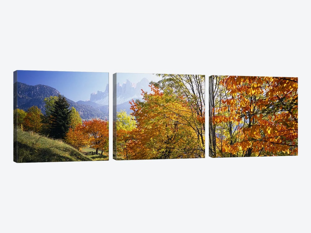 Autumn Landscape II, Odle/Geisler Group, Dolomites, Val di Funes, South Tyrol Province, Italy by Panoramic Images 3-piece Canvas Artwork