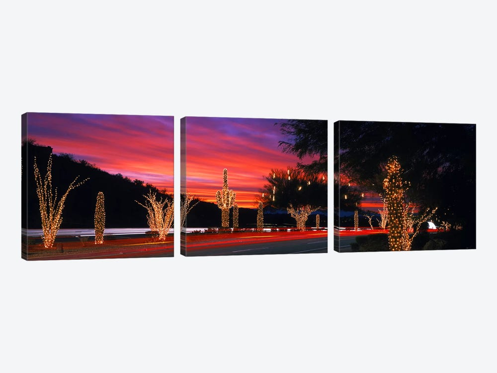 Christmas Lights On Roadside Cacti & Trees, Phoenix, Arizona, USA by Panoramic Images 3-piece Canvas Art