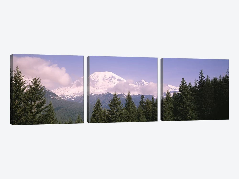 Mt Ranier Mt Ranier National Park WA by Panoramic Images 3-piece Canvas Art Print