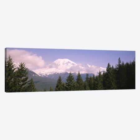 Mt Ranier Mt Ranier National Park WA Canvas Print #PIM4266} by Panoramic Images Canvas Wall Art