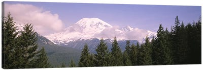 Mt Ranier Mt Ranier National Park WA Canvas Art Print