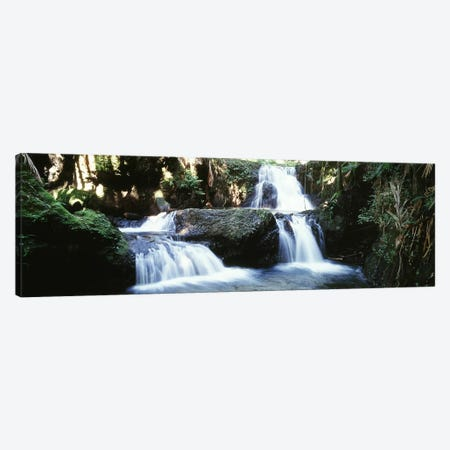 Waterfalls Hilo HI Canvas Print #PIM4267} by Panoramic Images Canvas Artwork