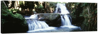 Waterfalls Hilo HI Canvas Art Print