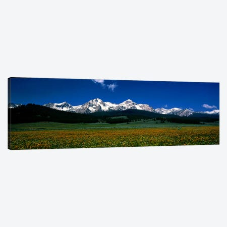 Sawtooth Mtns Range Stanley ID USA Canvas Print #PIM427} by Panoramic Images Canvas Print