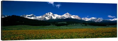 Sawtooth Mtns Range Stanley ID USA Canvas Art Print