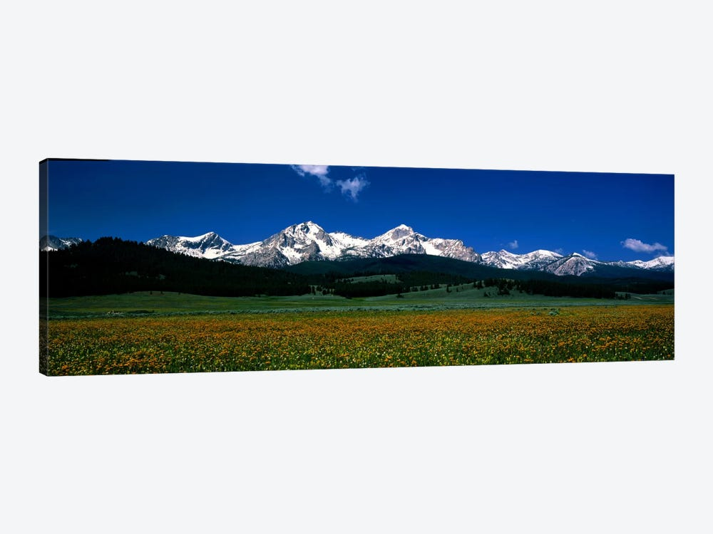 Sawtooth Mtns Range Stanley ID USA by Panoramic Images 1-piece Canvas Wall Art