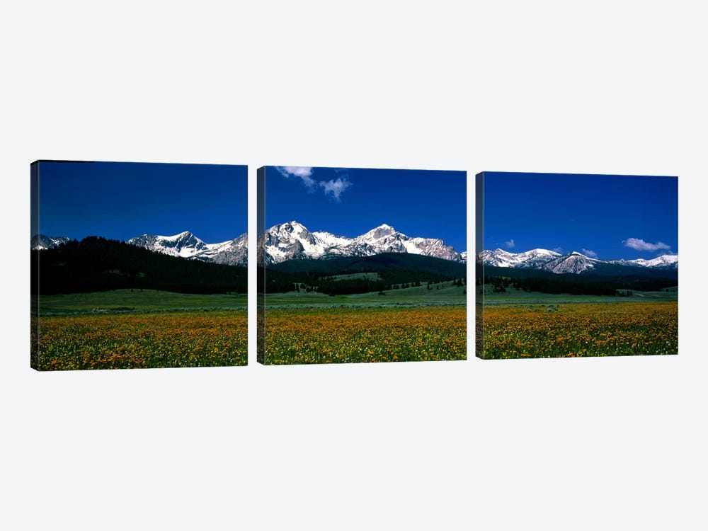 Sawtooth Mtns Range Stanley ID USA by Panoramic Images 3-piece Canvas Wall Art