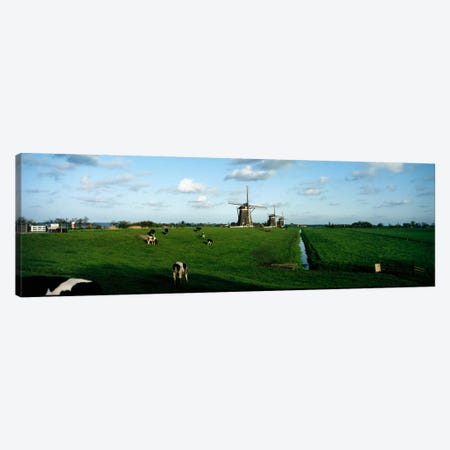 Windmills, Netherlands Canvas Print #PIM42} by Panoramic Images Canvas Artwork