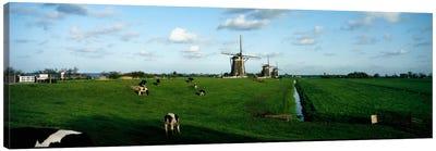 Windmills, Netherlands Canvas Print #PIM42