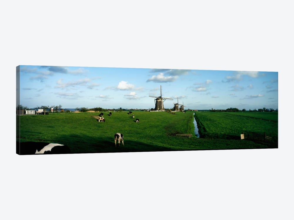 Windmills, Netherlands by Panoramic Images 1-piece Canvas Artwork