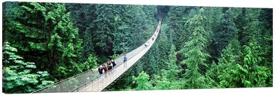 Capilano Suspension Bridge, North Vancouver, British Columbia, Canada Canvas Art Print