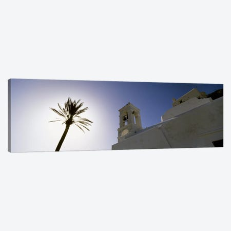 Low angle view of a palm tree near a church , Ios, Cyclades Islands, Greece Canvas Print #PIM4441} by Panoramic Images Canvas Print
