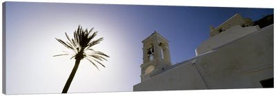 Low angle view of a palm tree near a church , Ios, Cyclades Islands, Greece Canvas Art Print