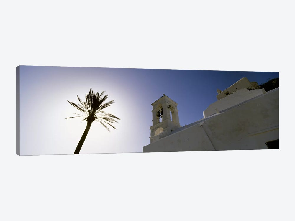 Low angle view of a palm tree near a church , Ios, Cyclades Islands, Greece by Panoramic Images 1-piece Canvas Artwork