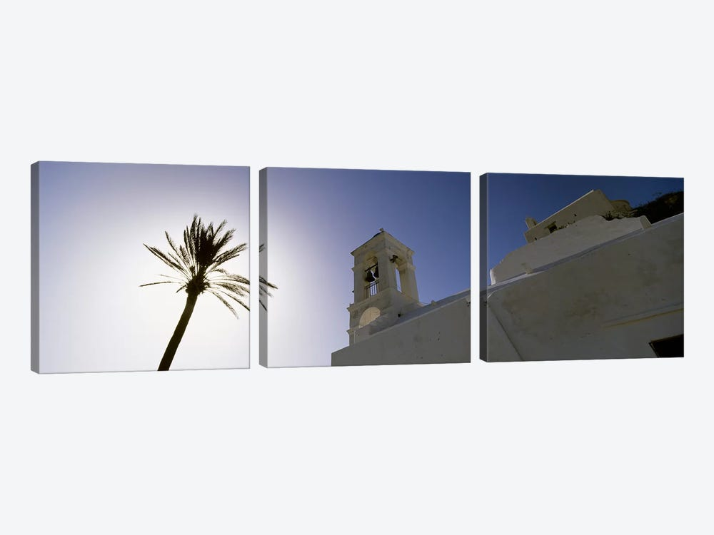 Low angle view of a palm tree near a church , Ios, Cyclades Islands, Greece by Panoramic Images 3-piece Canvas Art