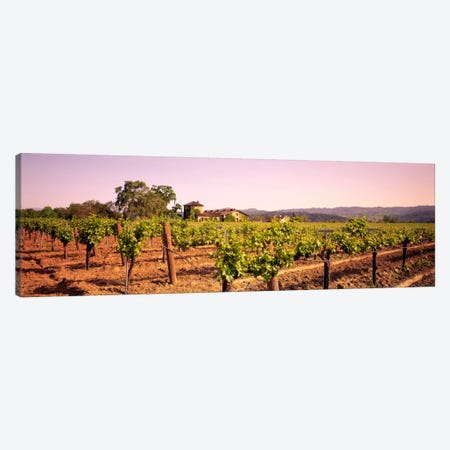 Sattui Winery, St. Helena, Napa Valley, California, USA Canvas Print #PIM44} by Panoramic Images Art Print