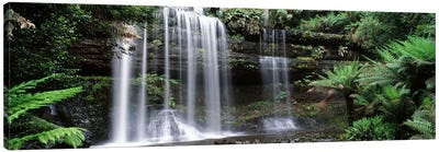 Waterfall in a forest, Russell Falls, Mt Field National Park, Tasmania, Australia Canvas Art Print