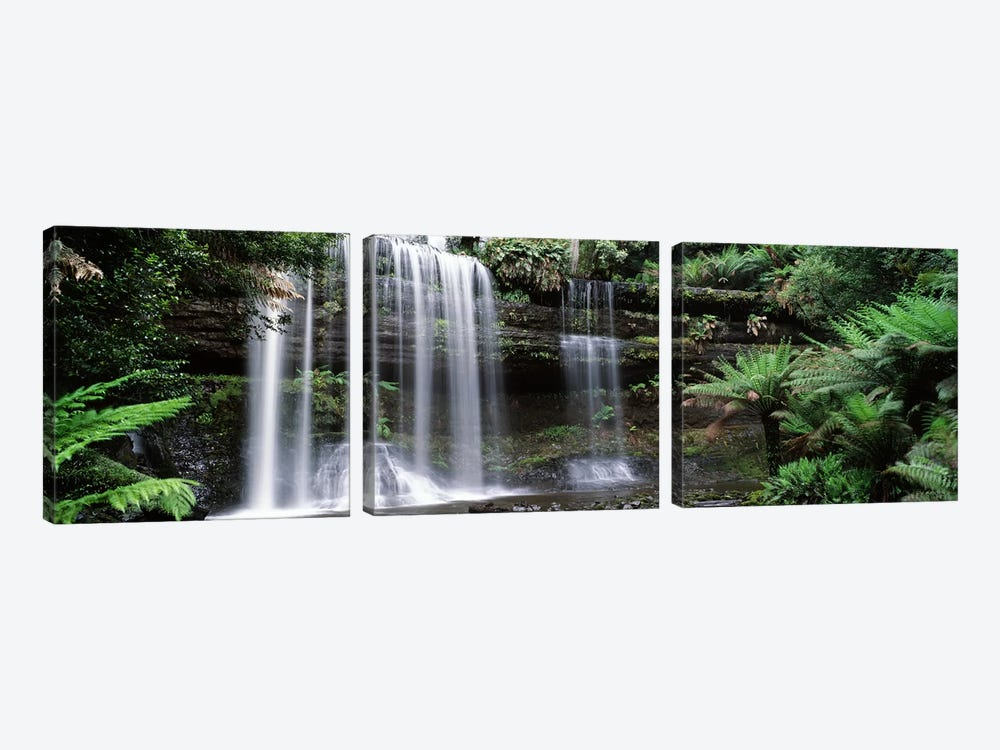 Waterfall in a forest, Russell Falls, Mt Field National Park, Tasmania, Australia 3-piece Canvas Print