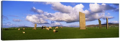 Stones Of Stenness, Orkney Islands, Scotland, United Kingdom Canvas Art Print