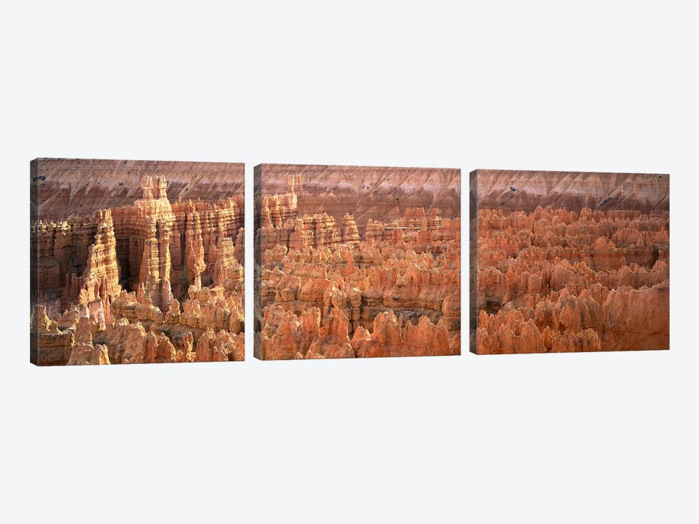 Hoodoos In An Amphitheater, Bryce Canyon National Park, Utah, USA by Panoramic Images 3-piece Canvas Art