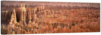 Hoodoos In An Amphitheater, Bryce Canyon National Park, Utah, USA Canvas Art Print