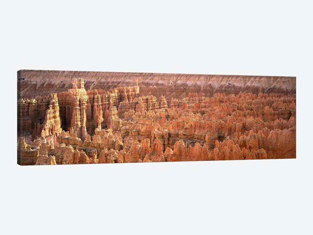 Hoodoos In An Amphitheater, Bryce Canyon National Park, Utah, USA by Panoramic Images 1-piece Canvas Artwork