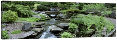 River Flowing Through A Forest, Inniswood Metro Gardens, Columbus, Ohio, USA Canvas Art Print