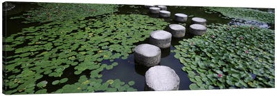Water Lilies And Stepping Stones In A Pond, Heian Shrine, Sakyo-ku, Kyoto, Japan Canvas Art Print