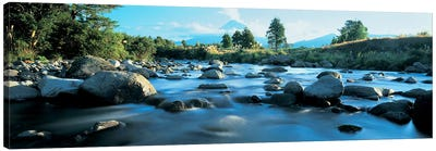 Rocks in the river, Mount Taranaki, Taranaki, North Island, New Zealand Canvas Art Print