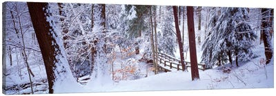Winter footbridge Cleveland Metro Parks, Cleveland OH USA Canvas Art Print