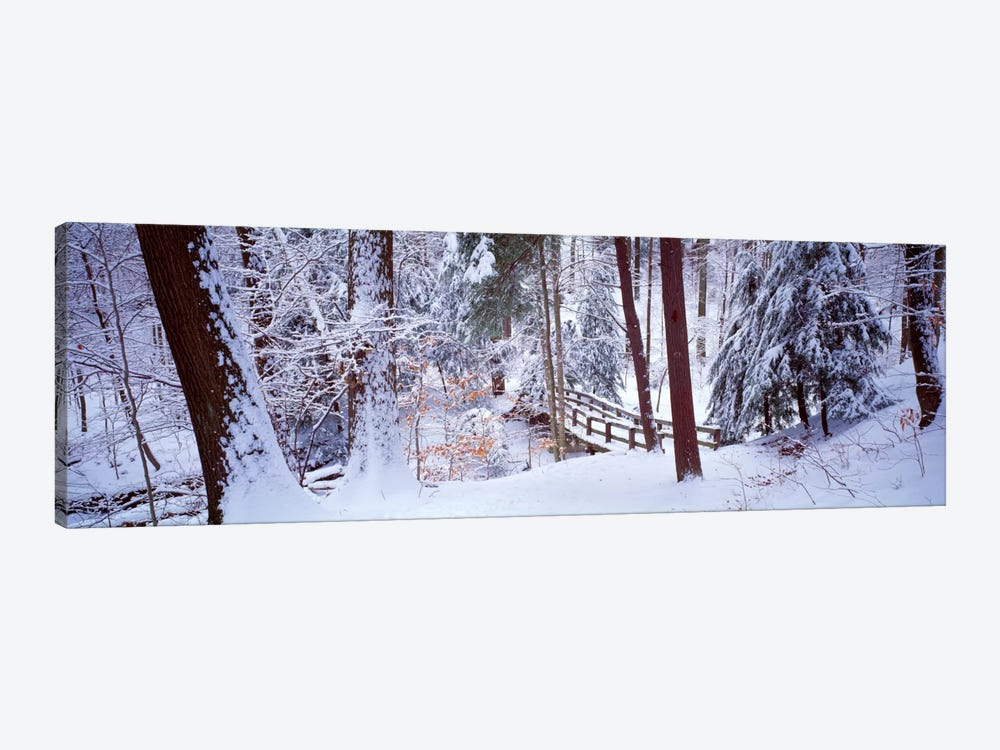 Winter footbridge Cleveland Metro Parks, Cleveland OH USA by Panoramic Images 1-piece Canvas Art Print