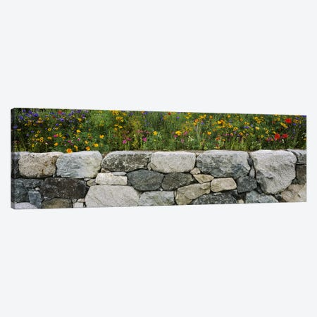 Wildflowers growing near a stone wall, Fidalgo Island, Skagit County, Washington State, USA Canvas Print #PIM5039} by Panoramic Images Canvas Print