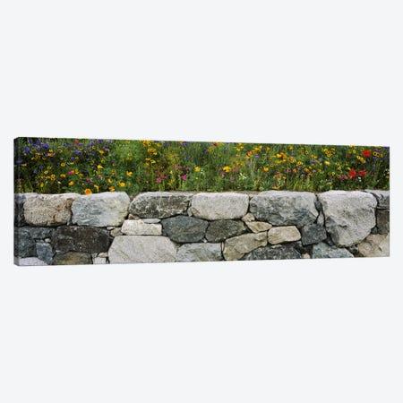Wildflowers growing near a stone wall, Fidalgo Island, Skagit County, Washington State, USA Canvas Print #PIM5039} by Panoramic Images Canvas Print