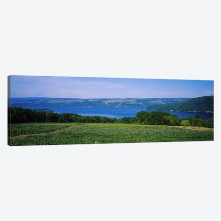 Vineyard Landscape, Keuka Lake, Finger Lakes, New York, USA Canvas Print #PIM5107} by Panoramic Images Canvas Wall Art