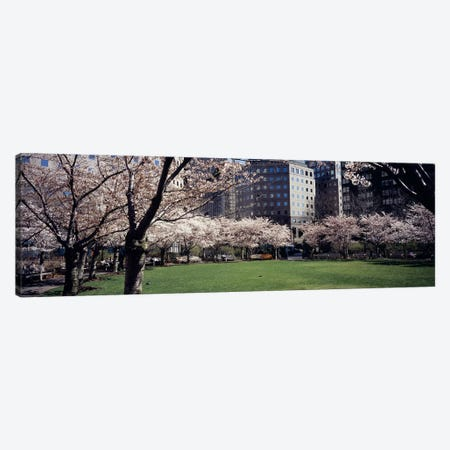 Trees in a park, Central Park, Manhattan, New York City, New York State, USA Canvas Print #PIM5140} by Panoramic Images Art Print