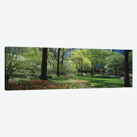 Trees in a park, Central Park, Manhattan, New York City, New York State, USA #2 Canvas Print #PIM5144} by Panoramic Images Canvas Art