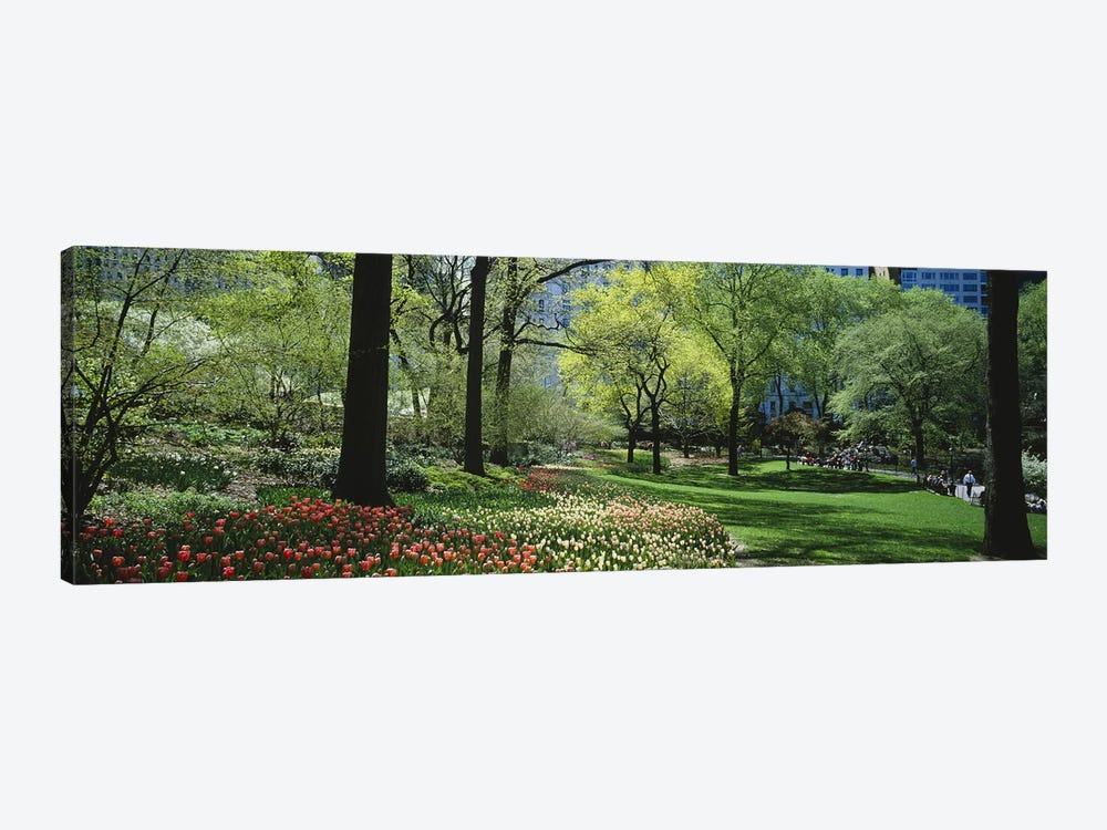 Trees in a park, Central Park, Manhattan, New York City, New York State, USA #2 by Panoramic Images 1-piece Canvas Print