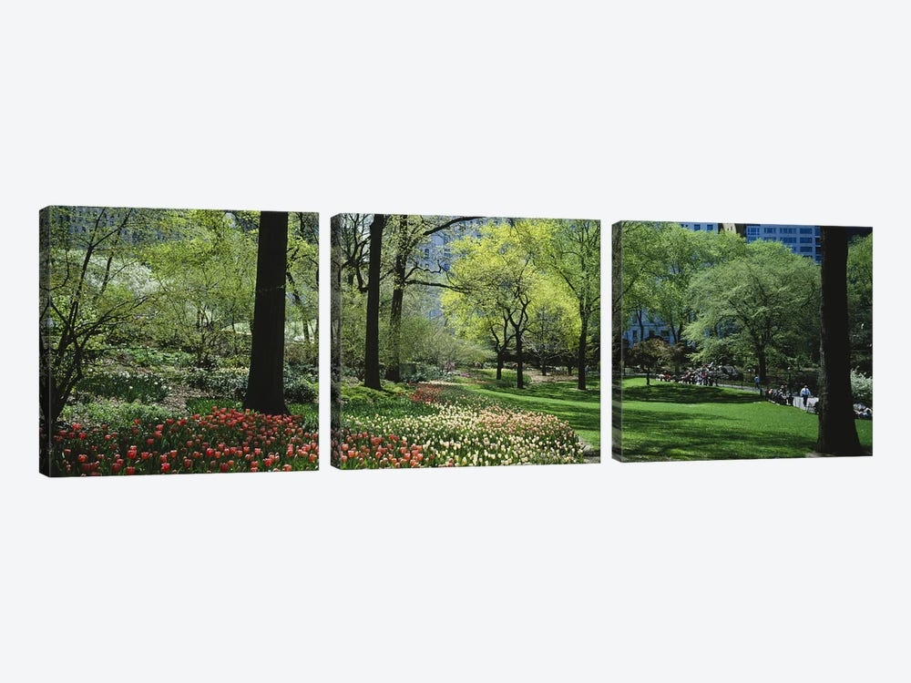 Trees in a park, Central Park, Manhattan, New York City, New York State, USA #2 by Panoramic Images 3-piece Art Print