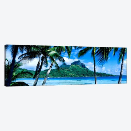 Tropical Landscape, Society Islands, French Polynesia Canvas Print #PIM517} by Panoramic Images Canvas Art Print