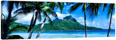 Tropical Landscape, Society Islands, French Polynesia Canvas Art Print