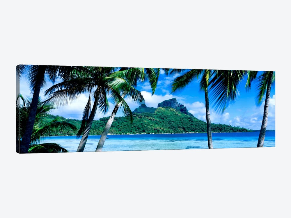 Tropical Landscape, Society Islands, French Polynesia by Panoramic Images 1-piece Canvas Artwork